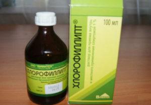 Как применять Хлорофиллипт при стоматите